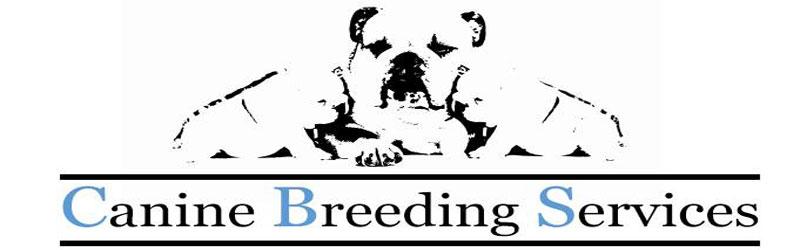 Cat Breeders Meaning Pet Breeds Mating Stock Illustration ...  Dog Breeding Logos